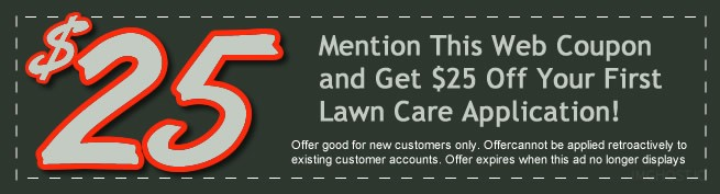 Discounts and offers on our lawn care services