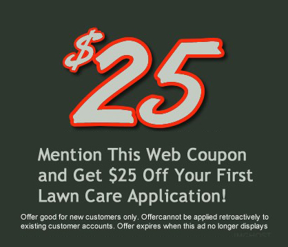 Special offers and discount deals on our lawn care services